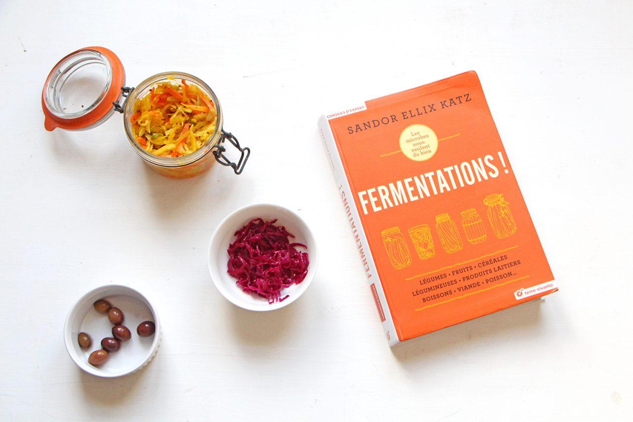 Livre fermentation editions Terre Vivante