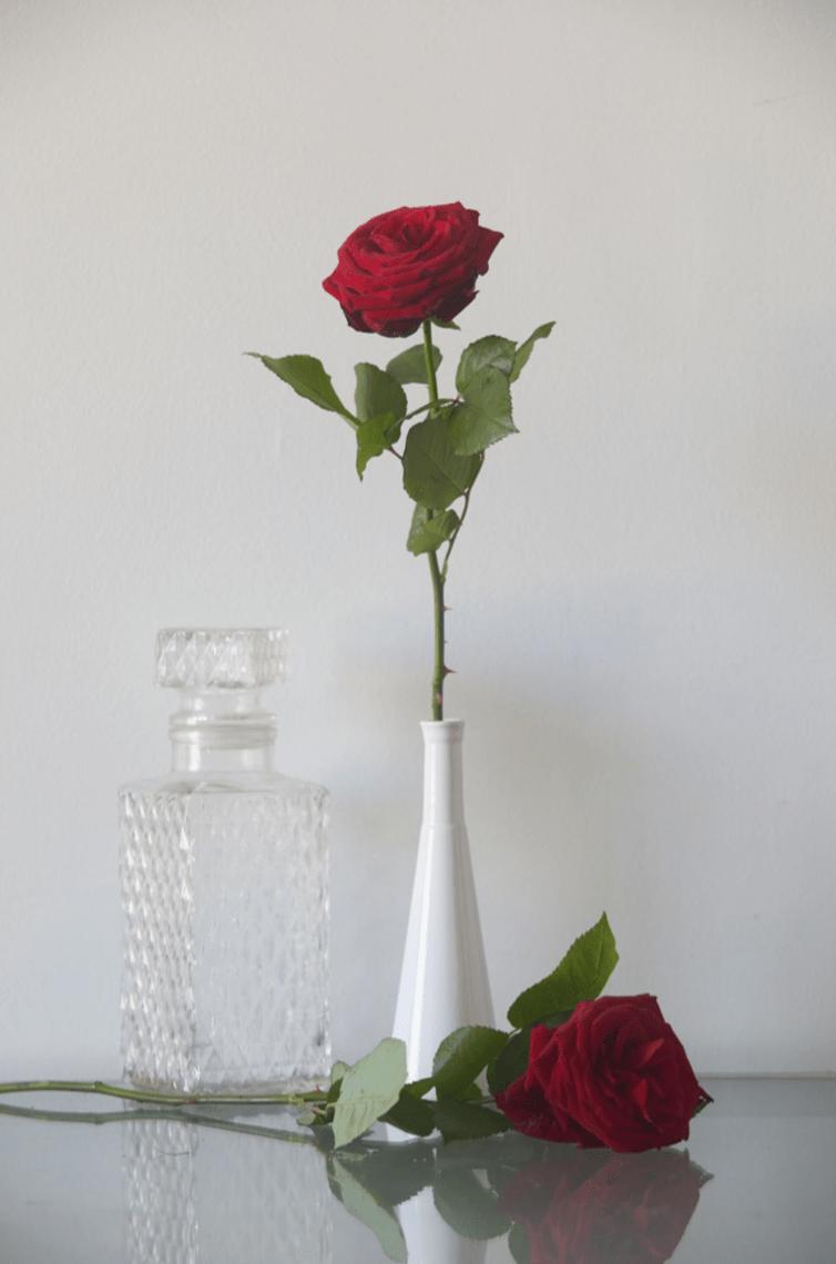 Combien De Rose Pour La St Valentin des roses pour la saint-valentin - montmartre addict