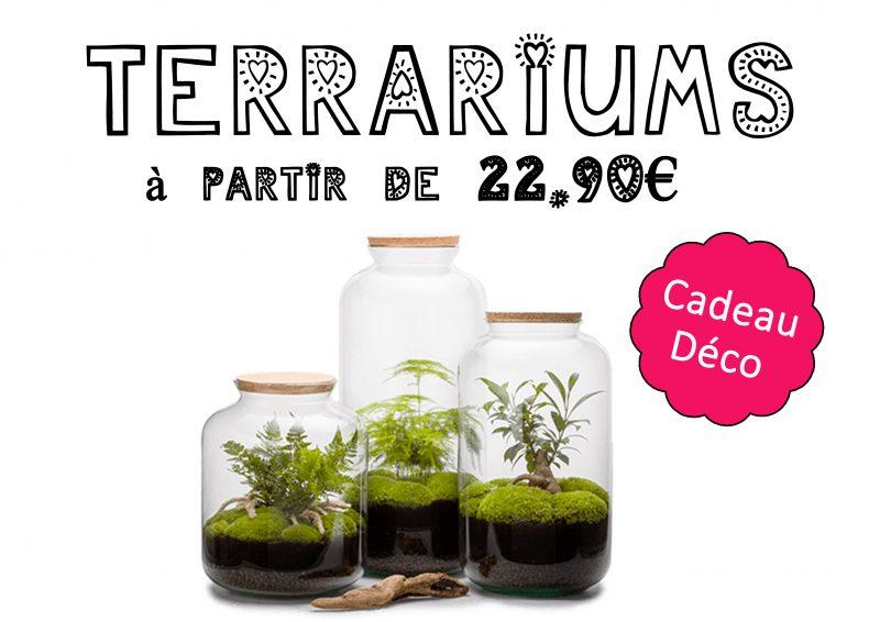 Sélection cadeau Fête des Grands-Mères - Terrariums à partir de 22.90€
