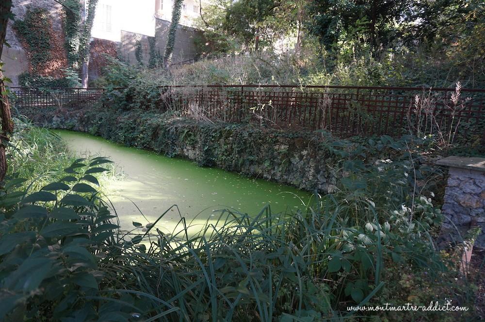 Jardin Sauvage Saint Vincent Montmartre Addict